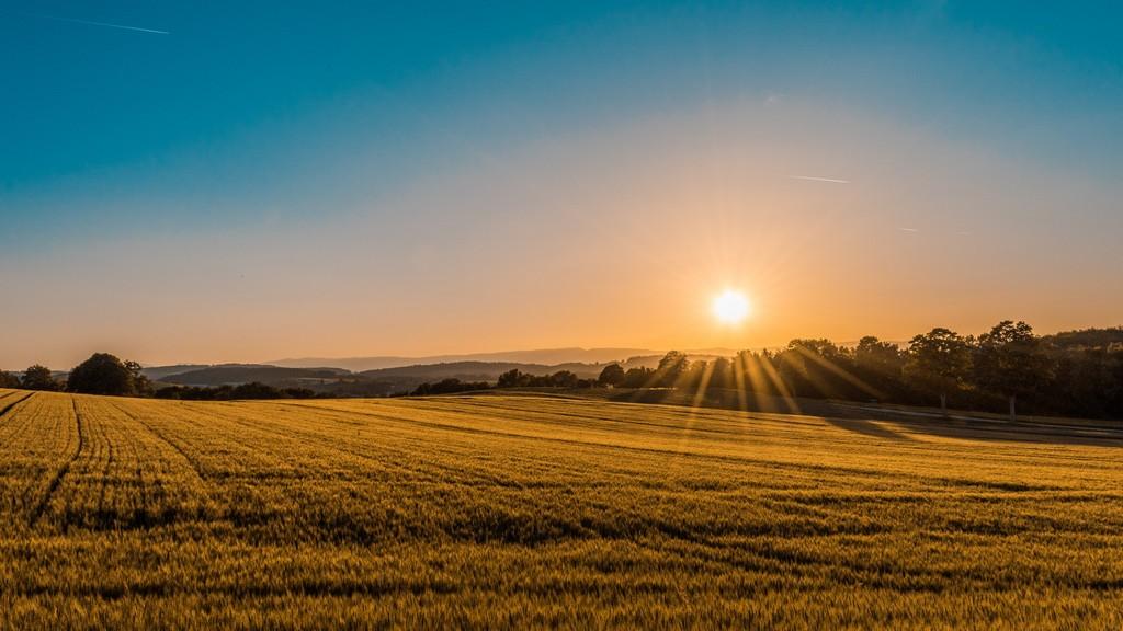 terrain avec soleil qui se lève